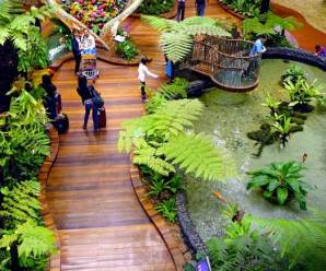 Maintaining Indoor Landscaping