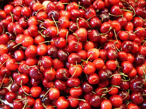 Todo acerca de las cerezas (I)