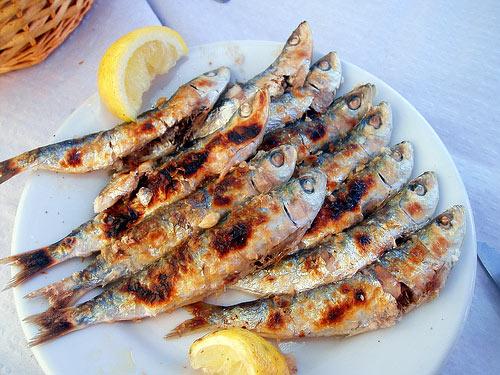 Aportes nutritivos de los diferentes tipos de pescado azul