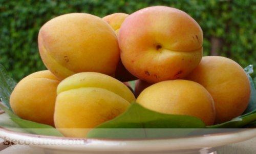 Beneficios de consumir albaricoques frescos