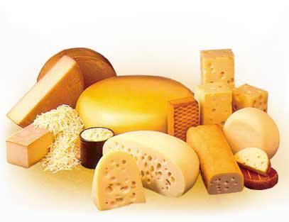 ¿Cómo se elaboran los quesos?