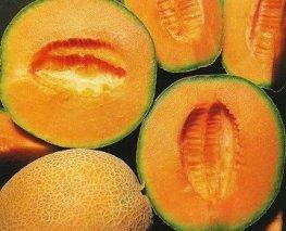 El melón fruta sana y ligera