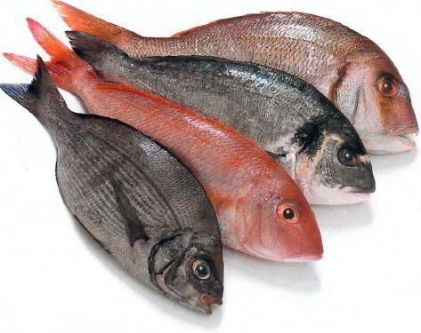 Conservación del pescado