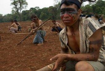 guarani kaiowa7