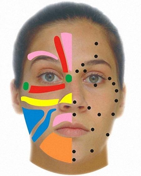 reflexologia-facial-1