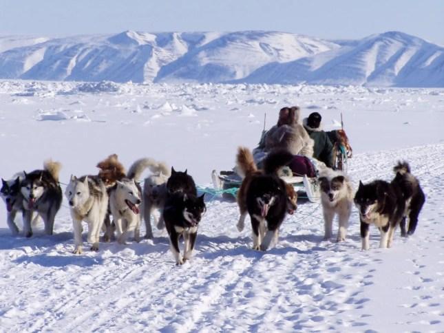 inuit7