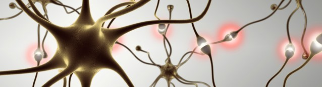 tecnicas-neurociencia