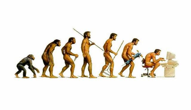 evolution-640x370