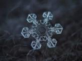 copo de nieve 12