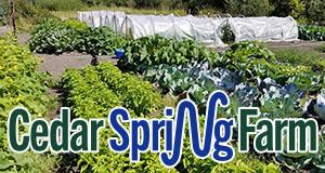 Cedar Spring Farm of Enumclaw
