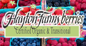 Hayton Farms