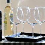 ¿Existe un tipo de copa para cada vino?