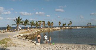Miami siempre presente