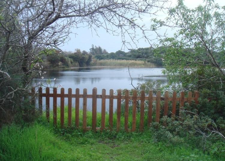Δεσποτική Λίμνη, ΚΥΚΠΕΕ, Ακρωτήρι, Λεμεσός, Κύπρος