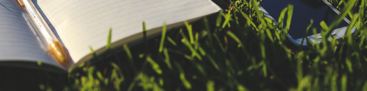 Nombreux articles sur l'écologie et l'économie verte