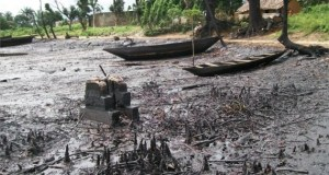 Ogoniland-Spill  Ogoniland clean-up: Crusaders want government to match talk with action Ogoniland Spill