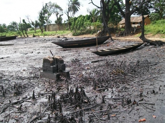 Land degradation from oil spill in Ogoniland, Nigeria  Ogoniland clean-up: Crusaders want government to match talk with action Ogoniland Spill