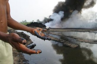 Pollution and environmental degradation in the Niger Delta  Activists ask government to compel Shell to pay for Delta ecological damage Niger Delta