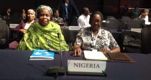UN to tackle Nigeria desertification photo