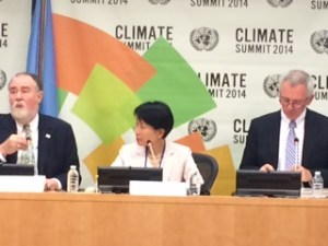 Gef2  GEF commits $3bn to battle climate change in developing nations Gef2 300x225