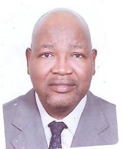 Yari Kabir, National Programme Manager, Urban Development and Advocacy, UN-Habitat Programme Support Office (HAPSO) in Nigeria