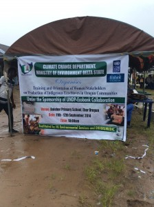 The event banner  Empowering Delta women with 'clean' eco-stoves (in photos) photo 9 e1410557938986 224x300
