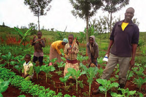 Family farmers in Kenya
