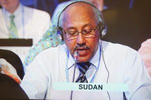 Chair of the African Group of Negotiators, Nagmeldin G. Elhassan
