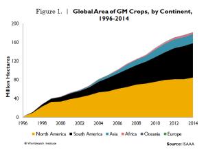 GM_crops