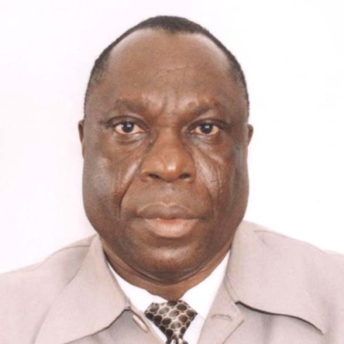 Prof. Emmanuel Olukayode Oladipo  Making Nigeria climate resilient (7): How is nation responding to the challenge? PROF