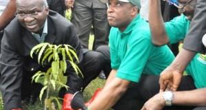Treeplanting  'Showcase accomplishment of tree planting initiative beyond Lagos' Treeplanting e1430034547311
