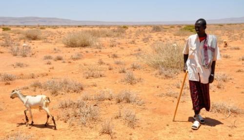 Drought in sub-Saharan Africa