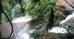 Parc national de Los Katíos