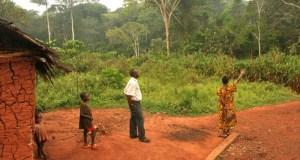 Cameroon  Biopalm: Cameroon communities left in the dark Cameroon e1443627646223