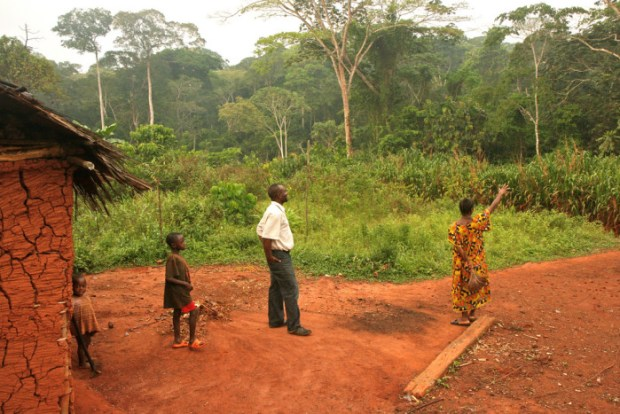 Forest-based communities in Cameroon have limited or no recognition of their customary land rights under Cameroon law. Photo credit: farm8.static.flickr.com  Biopalm: Cameroon communities left in the dark Cameroon e1443627646223