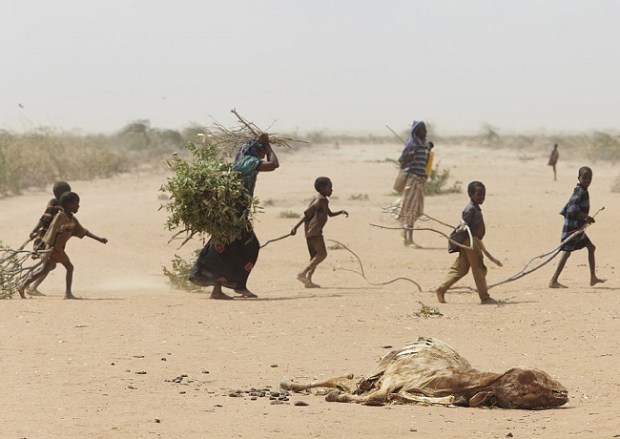 A family fleeing the 2011 drought and famine in Somalia collects firewood outside Dadaab refugee camp