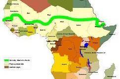 great green wall  Great Green Wall: How Nigeria lags behind greatgreenwall 0