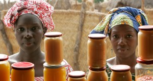 Seegal_Woman_Mango  Fresh funds emerge for developing country climate action Seegal Woman Mango