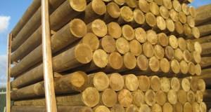 timber  Ogun apprehends illicit timber merchants photo roundstobs