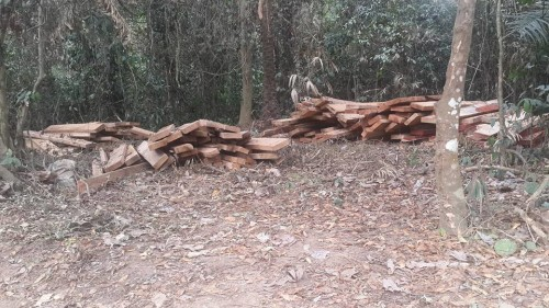 Timber extraction in Boki  Photos: Cross River, community in face-off over Super Highway Ekuri4 e1457299843614