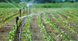 continental water  Nigeria, others tackle continental water, food insecurity challenges GWP