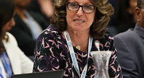 Thelma Krug  Nations show strong interest ahead new IPCC report Thelma Krug