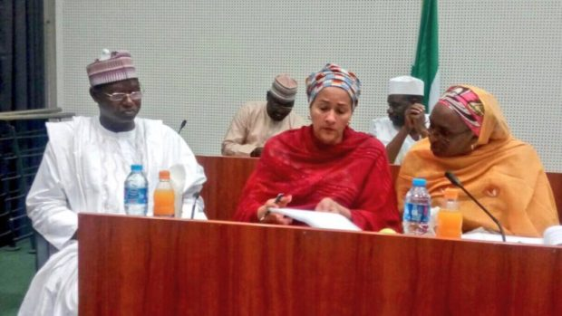 Ibrahim Usman Jibril (Environment Minister of State) (left) with Amina J. Mohammed (Minister of Environment (middle) and a ministry official