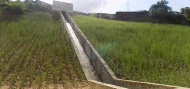Reclaimed gully site at the back of Union Bank in Atakpa Bay Side, Cross River State  NEWMAP to battle land degradation in 12 more states Atakpa