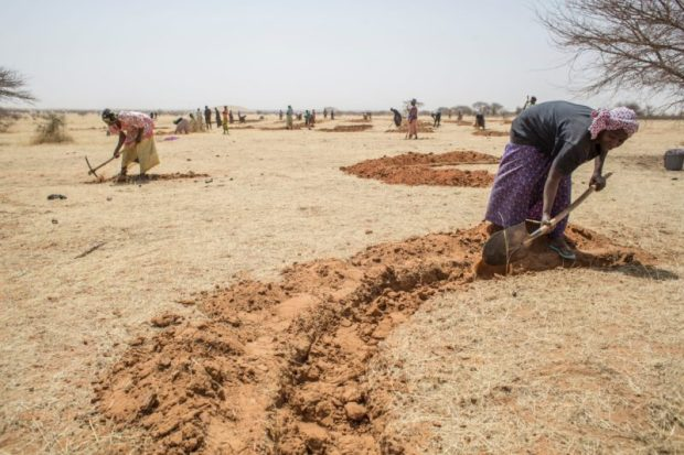 The UN's Food and Agriculture Organization has joined the initiative and is engaged in land restoration across the Sahel.  Images: People at the heart of land restoration Picture5 1 e1470250954213