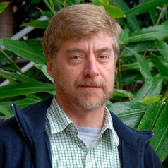 Douglas Sheil of the Norwegian University of Life Science. Sheil and fellow scientists reviewed over 400 Landsat satellite images of Borneo between 1973 and 2015 to track forest loss and degradation and the concomitant expansion of plantations.  Planations' role in Borneo forest loss, by study Douglas Sheil