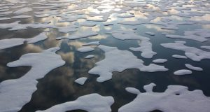 Arctic warming  Arctic warming triggers decline in sea ice, snow Arctic warming e1481755428372