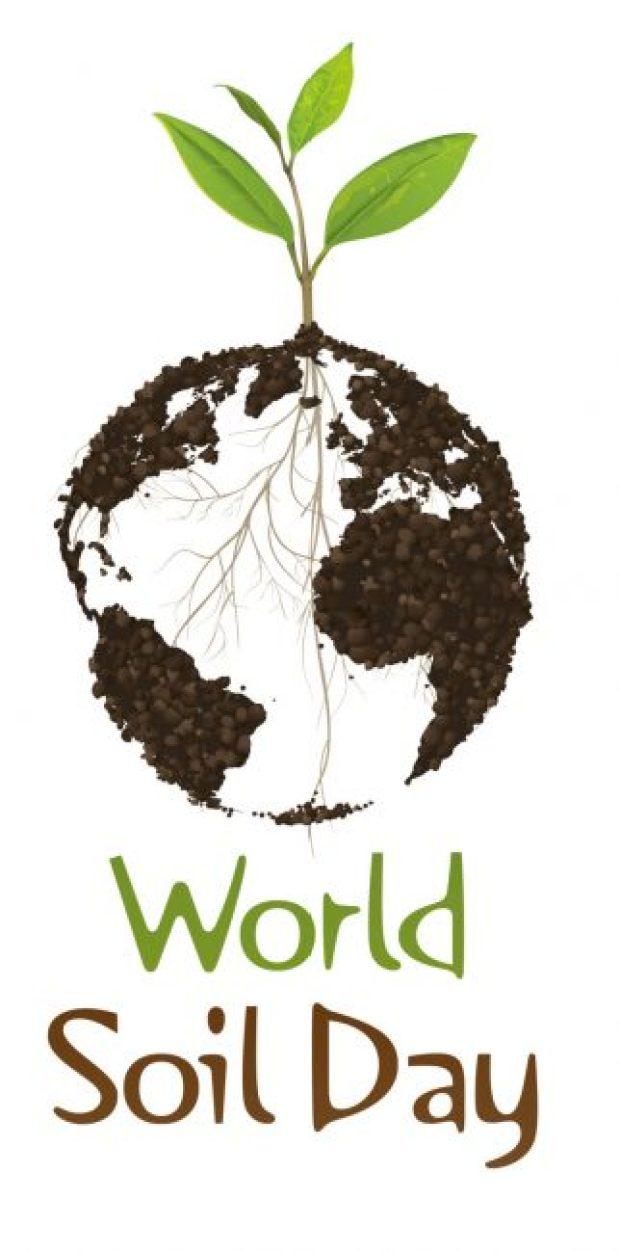Logo of the World Soil Day (WSD) 2016
