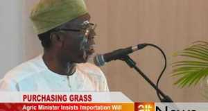 Agric Minister on grass