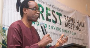 Nnimmo Bassey  World Environment Day: What nature has connected can't be separated – Bassey Nnimmo welcomes e1496683431182